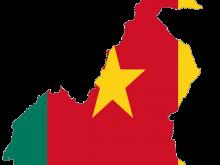 Kamerun Bayrağı