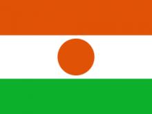 260px Flag_of_Niger.svg