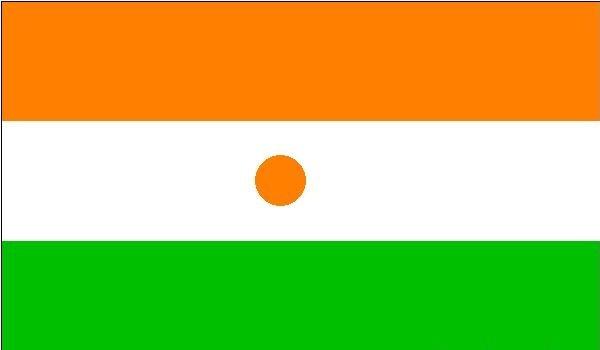 nijer bayrağı
