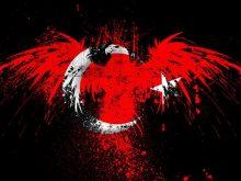 turk_bayragi_buyuk_3.jpg